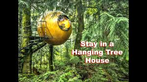 Hanging Tree House Hanging Spherical Tree House Lets You Live Like A Kid Youtube