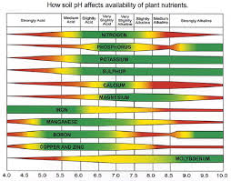 Cannabis Fertilizer Chart Cannabis Npk Autoflower Seed Shop