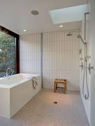 Download Wet Room Bathroom Design  GurdjieffouspenskycomWet Room Bathroom Design