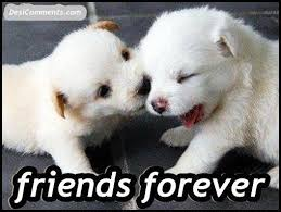 Quotes For > Best Friends Forever Poems That Make You Cry In Hindi ...