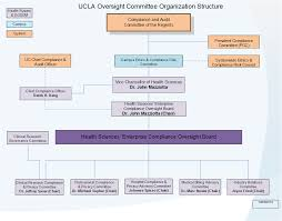 Doctor S Office Organizational Chart Organizational Structure Office Of Compliance Services