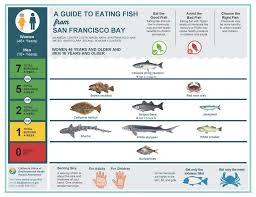 Mercury Levels In Fish Chart Safe To Eat Fish From The San Francisco Bay San Mateo