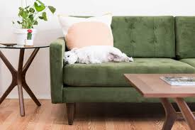 animal friendly furniture. Tips For Pet Friendly Furniture Animal Friendly Furniture