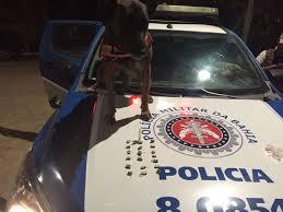 Resultado de imagem para policia militar porto seguro-obaianao