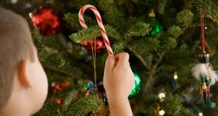 Christmas Tree 2012 U2013 A To Zebra CelebrationsChristmas Tree With Candy Canes
