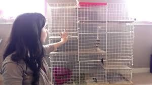 make your own rabbit cage you rh you com bunny cage ideas diy guinea pig cage