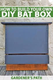 a box to call home build your own bat house with our diy instructions