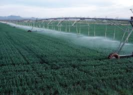 lateral move linear irrigation system lateral move irrigation system