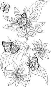 Butterfly And Flower Coloring Pages For Adults Butterfly Pages
