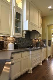 cabinet vent hood. Modren Hood Burrows Cabinets Kitchen Cabinet 21 With Briscoe Door Style In Bone And  Elite Vent Hood In Cabinet Vent Hood T