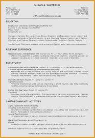Excellent Resume Example Amazing Examples Of Excellent Resumes New Excellent Resume Examples