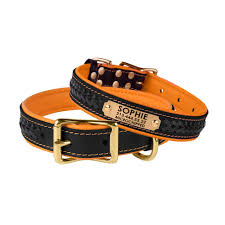 leather dog collar soft padded brass buckle personalized nameplate