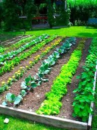 Small Picture garden landscape design online landscape design online courses