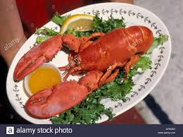 A Maine lobster dinner being served in ...