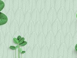 6 Fresh Green Leaves Powerpoint Background Picture 1001ppt Com