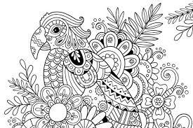 Kleurplaten Voor Volwassenen Vogels Papegaai Norskiinfo
