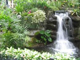 Appealing Garden Design Ideaspleted With Waterfall And Green Plants  Furnished Various Flowers Plus As The Additional
