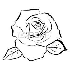 Foto Disegni Rose Immagini E Vettoriali
