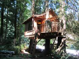 cool tree house blueprints. Extraordinary Tree House Design Architecture With Unique Wooden Amazing And Astonishing Decoration Ideas Cool Blueprints