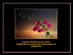 Beautiful Quotes About Life And Flowers Best Of Beautiful Quotes For Life With Beautiful Flowers This Is Quite Good