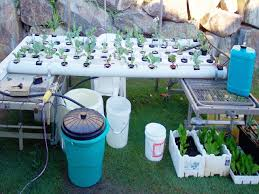 how to build a hydroponic garden. how to build a hydroponic garden 6