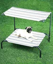 elevated outdoor dog bed – fluzo.info
