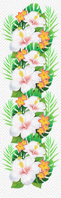 white exotic flowers decoration png clipart tropical flower clipart