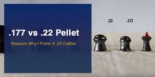 177 Vs 22 Pellet Reasons Why I Prefer A 22 Caliber