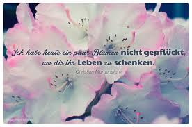 Friedrich Nietzsche Zitate Freundschaft Leben Zitate