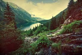 landscape free landscape vectors photos and psd files free download