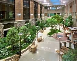 interior landscaping office. Roma Landscape Design Offers A Free Consultation On The Best Applications For Office Plants In Your Environment, And Our Green Guarantee Ensures That Interior Landscaping I
