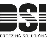Myndaniðurstaða fyrir dsi plate freezers