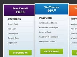 Pricing Chart Examples 30 Beautiful Pricing Table Designs Bashooka