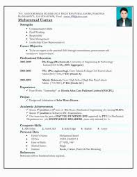 Template Professional Resume Format Doc Resume Template