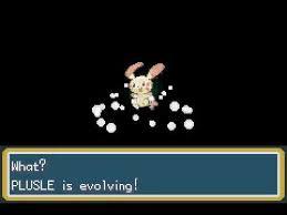 Pokemon Plusle Evolution Chart Errored Evolution Youtube