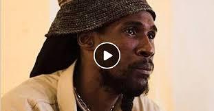 Midnite - Bushman Selection by André Duarte de Albuquerque listeners    Mixcloud