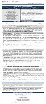 Sample Resume Sales Marketing Nonprofit Resume Writers