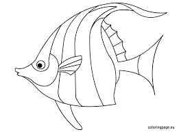 angel fish coloring page