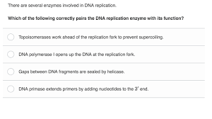 Dna As The Genetic Material 716244512882 Dna Replication Process