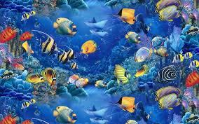fish tank wallpapers.  Tank Fish Tank Wallpaper Hd 19201080 Aquarium Wallpapers 38 Wallpapers   Adorable And 0