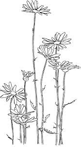 Small Picture Garden of Daisy Flower Coloring Page Download Print Online