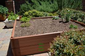 a raised garden bed or box garden is perfect for tight spaces