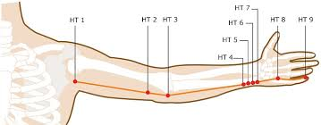 Heart Meridian Acupuncture Points Smarter Healing