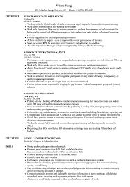 Operations Team Leader Sample Resume Lead Teller Resume Artist