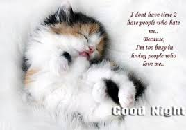 Cute Good Night Quotes Magnificent Cutegoodnightquotes 48greetings