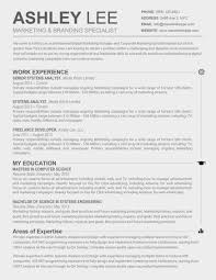 Free Resume Templates Download For Ipad Avionenet