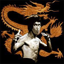 Learn Kung Fu And Chinese Martial Arts Training Techniques Dragon