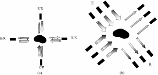 Progress towards in vitro quantitative imaging of human femur     IOPscience   Institute of Physics Zoom In