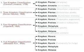 Five Kingdom Classification Chart Describe About Five Kingdom Classification With Help Of