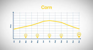 Corn Seasonal Chart Understanding Seasonality In Grains
